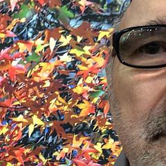 Michael DeSiano - Artist