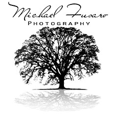 Mike Fusaro - Artist