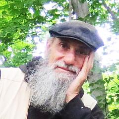 Michael A Klein