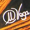 Miguel Angel Vega Velez