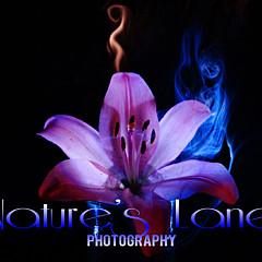 Natures  Lane