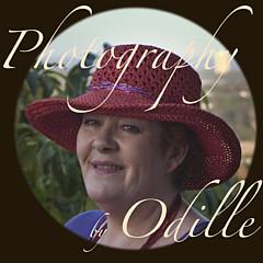 Odille Esmonde-Morgan - Artist