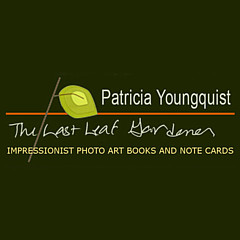 Patricia Youngquist - Artist