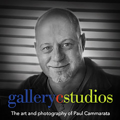 Paul Cammarata - Artist