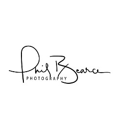 Phil Bearce - Artist