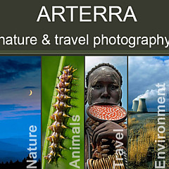 Arterra Picture Library - Artist