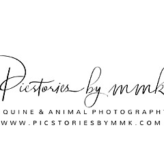 Picstoriesbymmk Photography - Artist