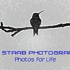PM Staab