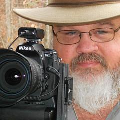Randy Walton - Artist