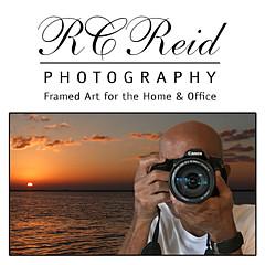 Ronald Reid - Artist