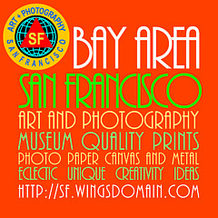 San Francisco Art and Photography - Artist