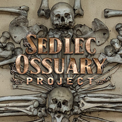 Sedlec Ossuary Project - Artist