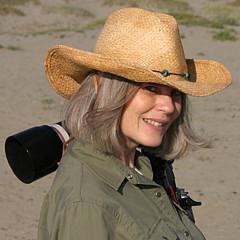 Sharon Foelz - Artist