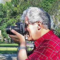 Stephen Bonrepos