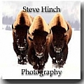 Steve Hinch