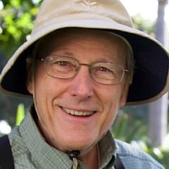 Steve Kaye - Artist