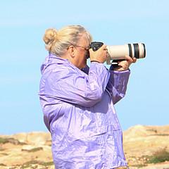 Sue Masterson