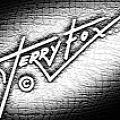 Terry Fox - Artist