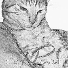 Tinki Pinki Art
