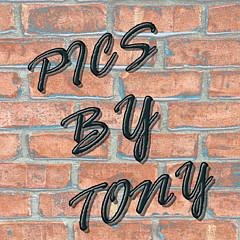 Pics By Tony - Artist