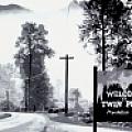 Twin Peaks - Artist