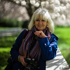 Wendi Donaldson Laird - Artist