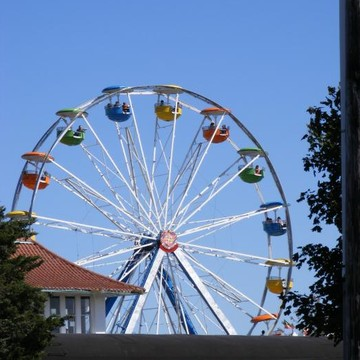 Carnival and Amusement parks Collection
