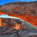 Canyonlands National Park - Island In The Sky District Collection