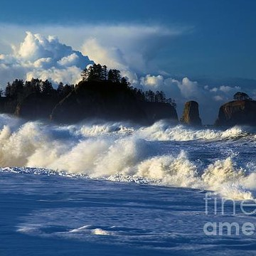 Olympic National Park - Rialto Beach Collection