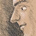 Pencil Sketches Collection
