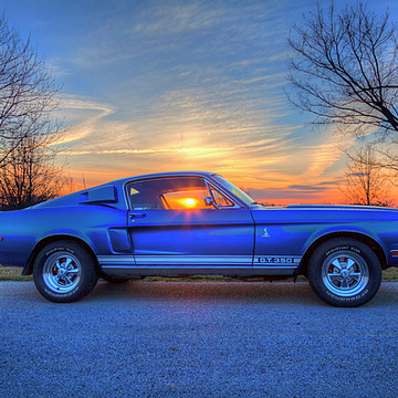 1968 Ford Shelby Mustang Collection