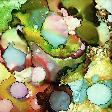 Colorful Cava Collection