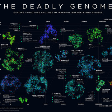 Deadly Genomes