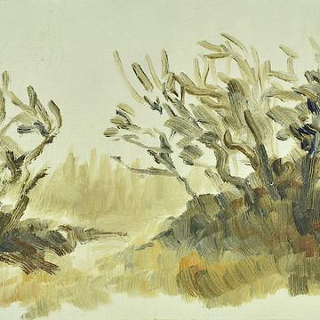 Autumn mist over Saelen    Hoestdimma oever Saelen