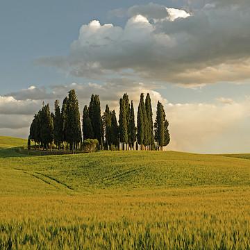 Italy - Tuscany and Venice