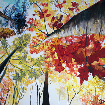 Art By Cedar Lee