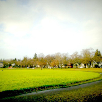 Photo-Based Landscapes