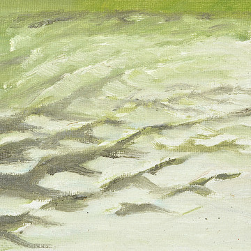 Studies of waves