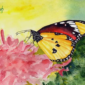 THINGS - Butterflies