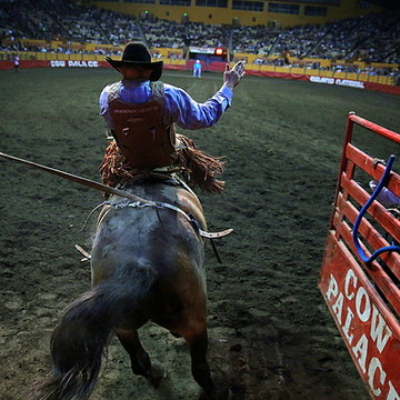 2015 Grand National Rodeo at the Cow Palace in San Francisco Collection