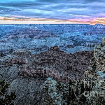 2020 Grand Canyon Collection