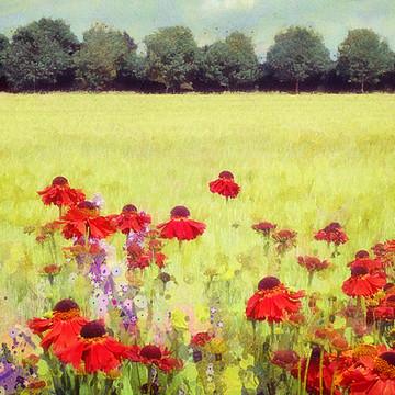 A homage to Gustav Klimt Collection