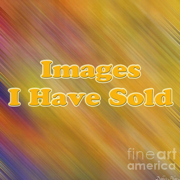 A - Images I have sold Collection