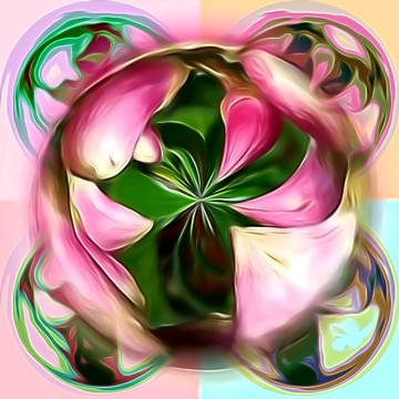 Abstract Designs and Altered Photos Collection