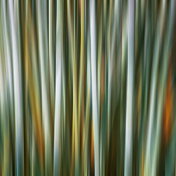 Abstracts Motion Blur  Collection