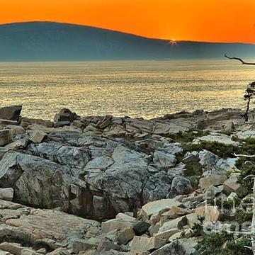 Acadia National Park - Schoodic Peninsula Collection