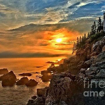 Acadia National Park - Sea Wall Area Collection