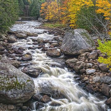 Adirondack State Preserve Collection