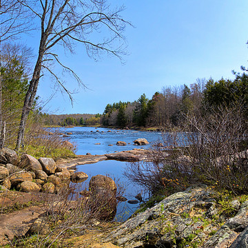 ADK - The Moose River Collection