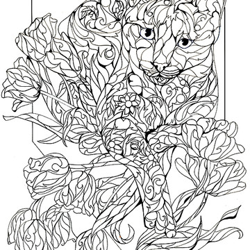 Adult Coloring Pages Collection